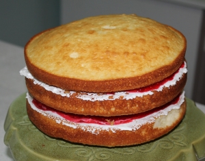 Add layers until they look like this. If your cake isn't perfectly flat, no worries. Just add extra whipping cream to even it out.