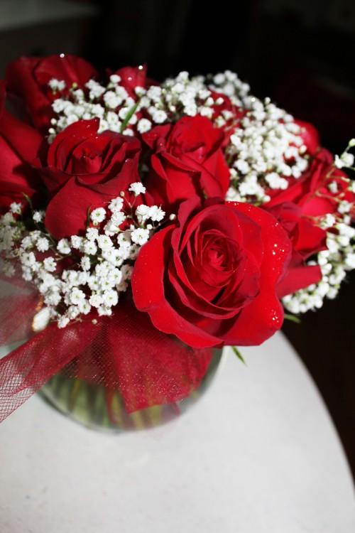 roses from scott