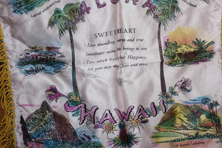 cedar chest hawaii pillow cover