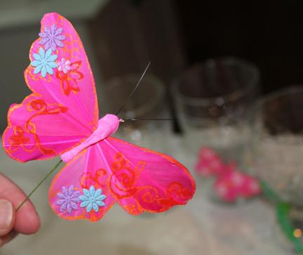 butterfly glasses butterfly