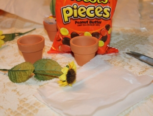 Supplies you need  - Reese's Pieces, mini clay flower pots, small sunflower stems (I used silk), tissue paper, wire cutters, scissors.