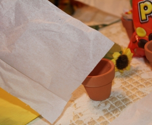 Cut tissue paper into small squares.