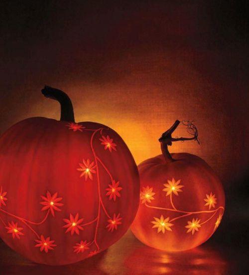 pumpkin party floral pumpkins