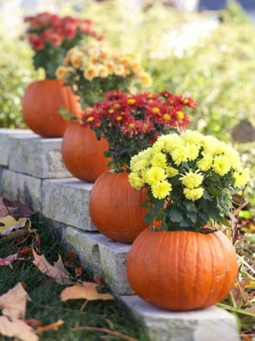 Classic combo of mums and pumpkins - you can't go wrong, especially when you use a variety of colors with the mums.