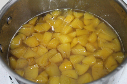 Stir peaches, 1 cup of water and the sugar in a heavy saucepan until sugar dissolves. Bring to a boil, then turn down heat and simmer for about 15 minutes, stirring occasionally, until juice gets thick and syrupy. Remove from heat and let cool.