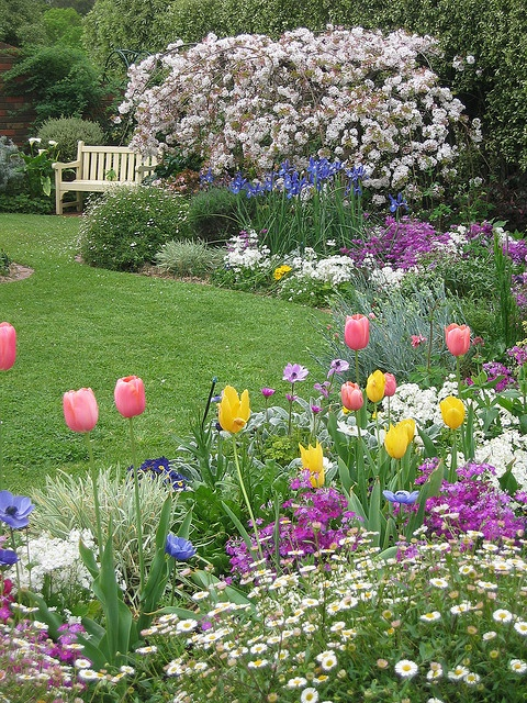 tulip with bench