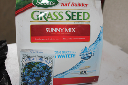 I used a bag of grass seed we had left over from last summer and threw in a few flower seeds.
